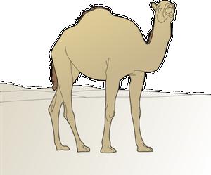 Cartoon image of a camel.