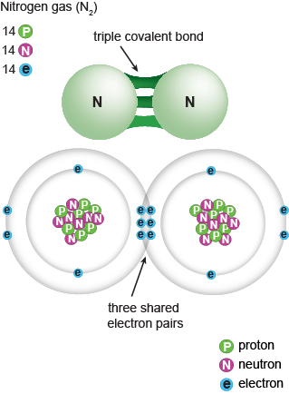 how to draw a triple covalent bond