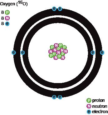 biology protons neutrons and electrons shmoop biology