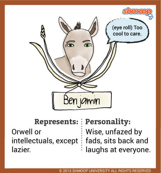 benjamin a donkey in animal farm character analysis