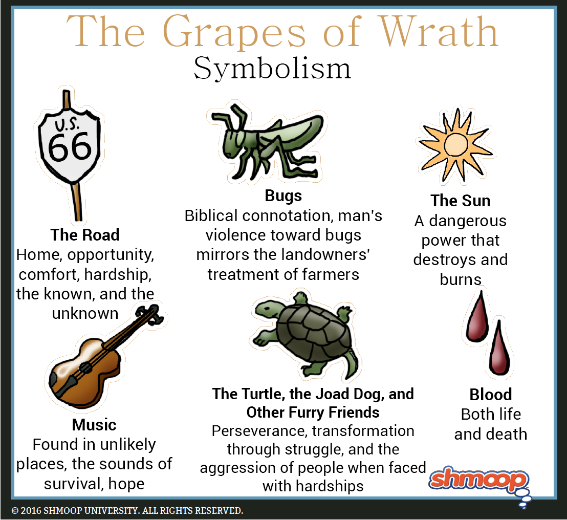 The turtle the joad dog and other furry friends in the grapes of wrath click the symbolism infographic to download biocorpaavc Images