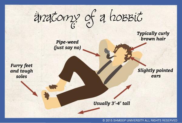 Hobbit Anatomy