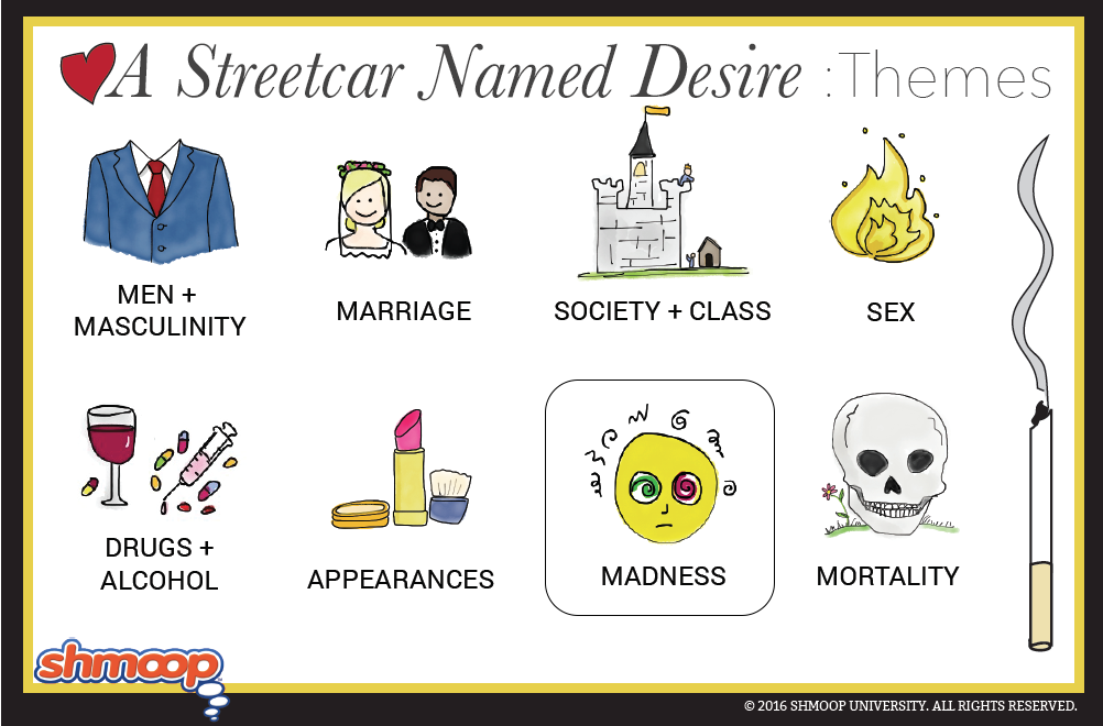 literary devices used to establish theme in streetcar named desire