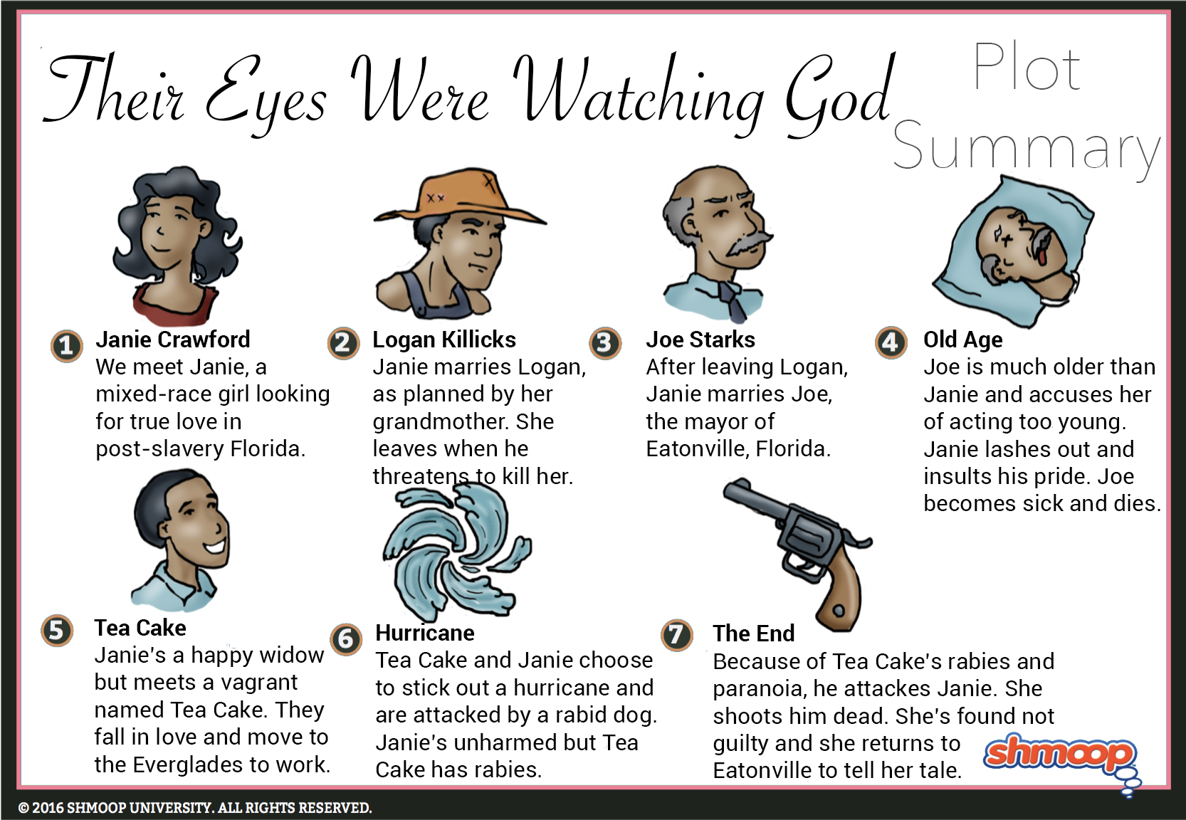 plot summary in their eyes were watching god chart plot summary