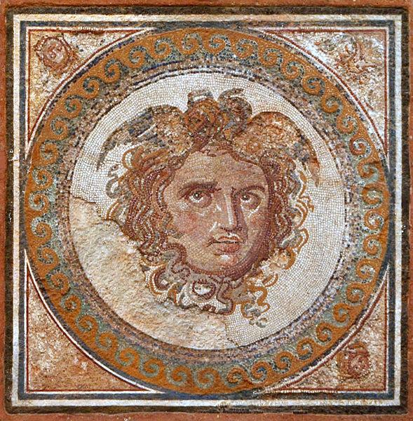 Medusa Photo Mosaic Of Medusa