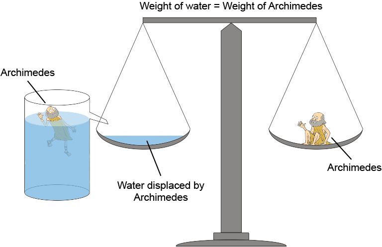archimedes principles measure body fat percentage