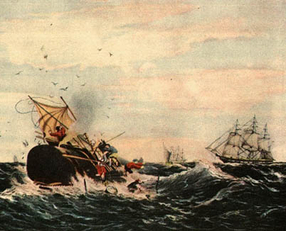 moby dick essay topics Moby dick research papers explore the novel by herman melville writing a research paper is easy with paper masters.