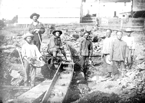 Asian california gold rush