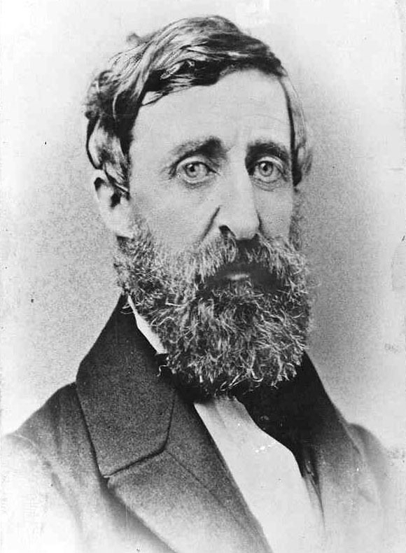 an analysis of the chapters of henry david thoreaus walden Walden study guide contains a biography of henry david thoreau, literature essays, a complete e-text, quiz questions, major themes, characters, and a full summary and analysis.