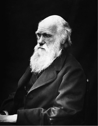 a black and white portrait of Charles Darwin
