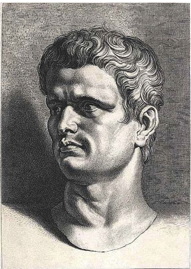 the tragic flaws of marcus junius brutus Marcus brutus-tragic hero - free download as word doc (doc / docx), pdf file (pdf), text file (txt) or read online for free.