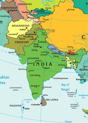 History of South Asia Reading